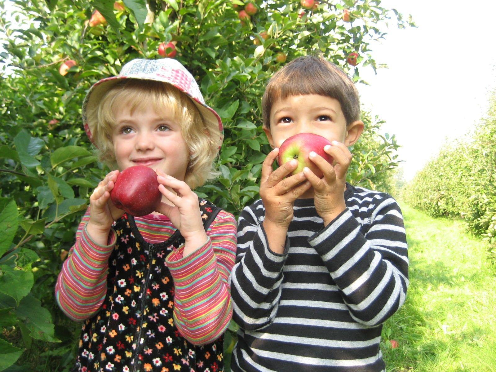 kindjes-met-appel